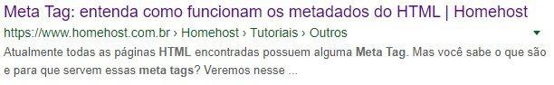 Exemplo de resultado para HTML Meta Tags